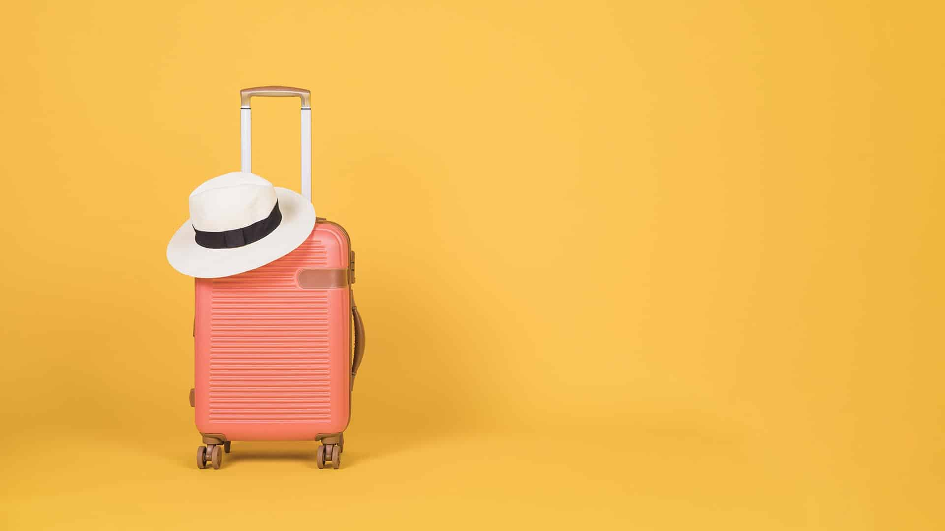mimionthego-suitcase