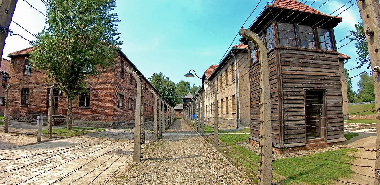 Auschwitz-mimionthego